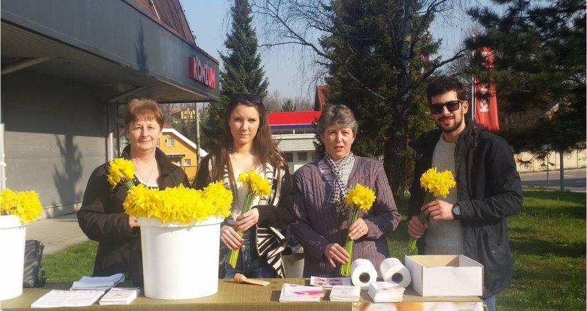 """Obilježavanje dobrotvorne akcije povodom """"Dana narcisa"""" ispred Konzuma u Ozlju, 25.03.2017, subota od 09:00 – 12:00 sati"""